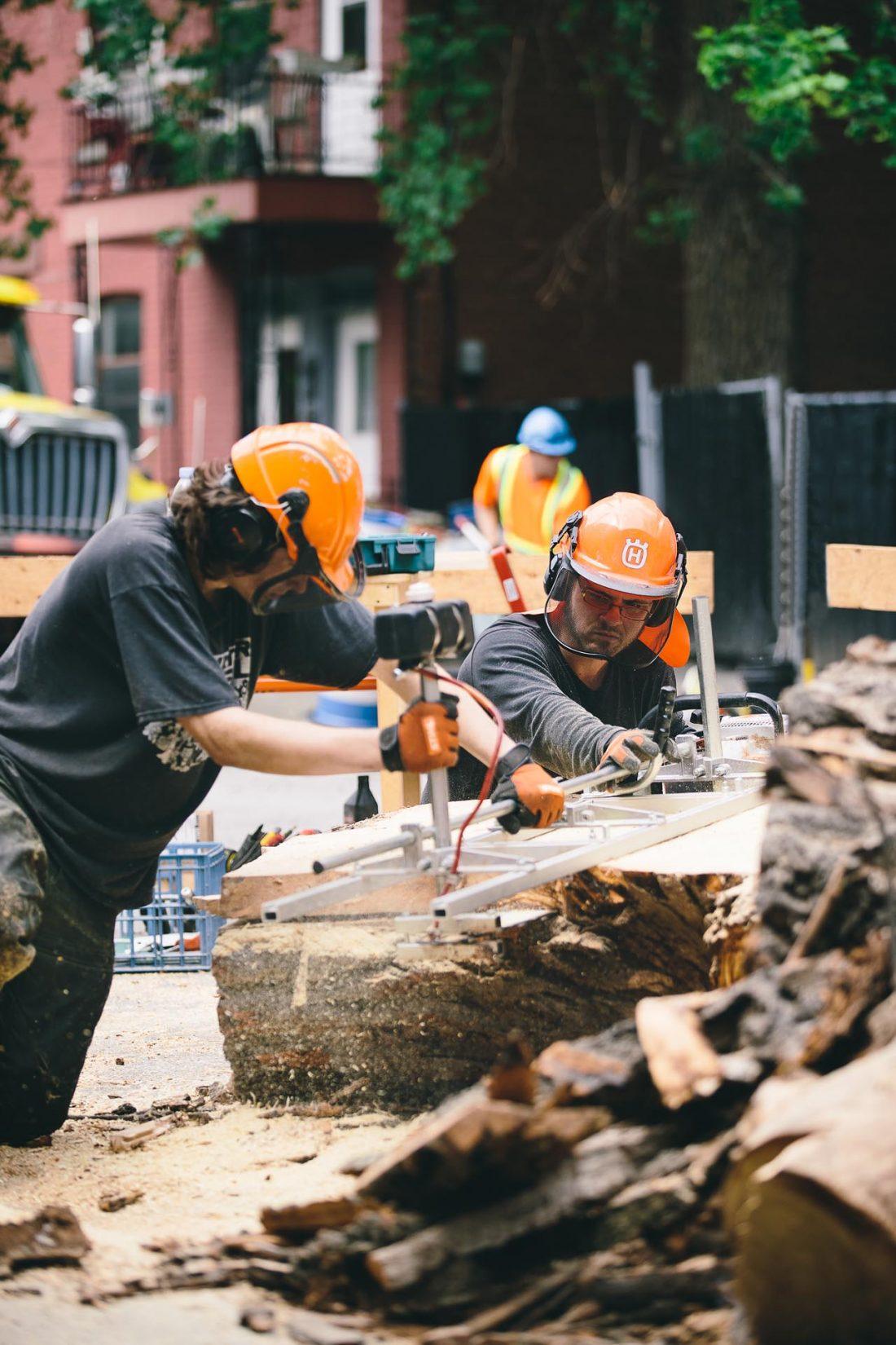 cabinet-maker-slab-urban-tree